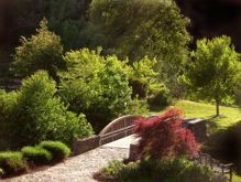 Landscaping your home can be an enjoyable task. Learn more.