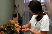 If you plan to move your plants, learn some basic tips first.